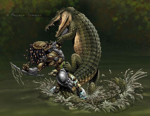 File:Predator vs croc colours by malsem-d6sufoo.jpg