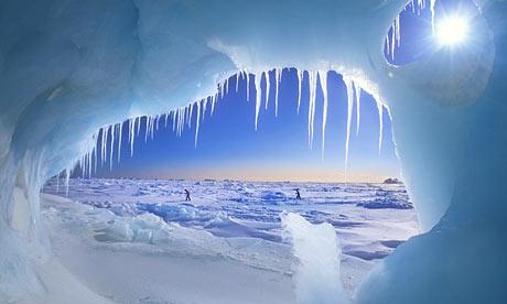 File:Arctic.jpg