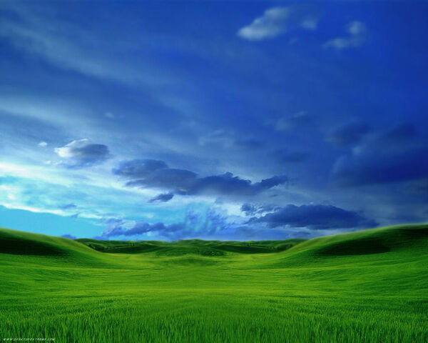 File:Grassy Plains 717200735815PM691.jpg