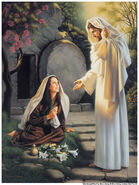 Witness-of-the-resurrection-power-of-jesus-christ1