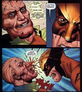 Hard skull by Wolverine