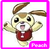 File:Peachfger.png