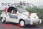 Car-radiacar