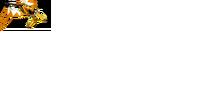 Bakuryuu Pteranodon