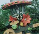 Cactus Mozoo