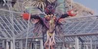 Butterfly Evo