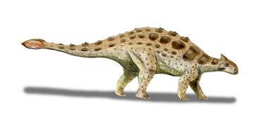 Ankylosaurus palaeocritti