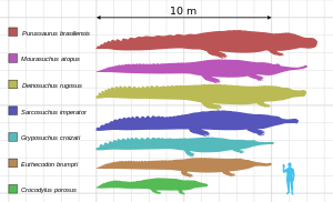 File:Deinosuchus size.png