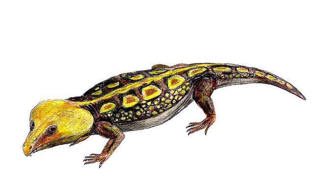 File:Labidosaurus life restoration.jpg
