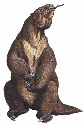 File:Megatherium.jpg