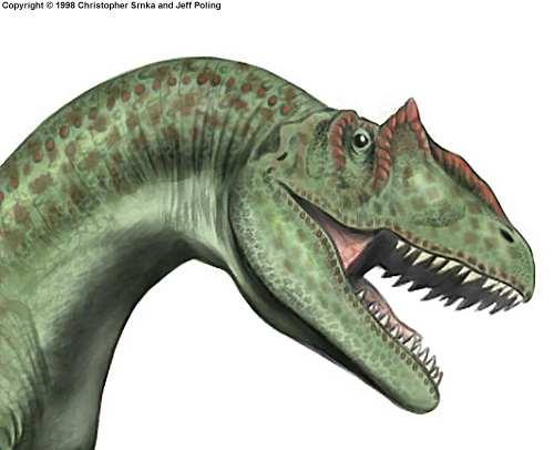 File:Allosaurus2.jpg