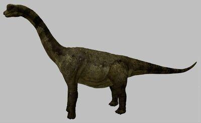 Palyuxasaurus-1-