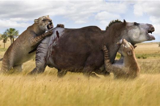 File:Smilodon attacks Toxodon.jpg