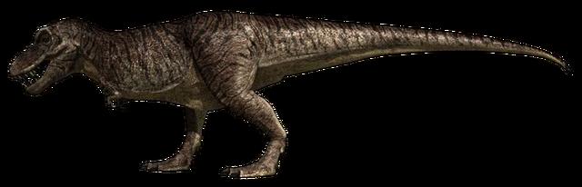 File:Tyrannosaurus Rex JFC.png