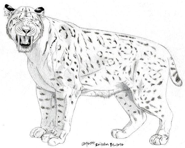 File:Smilodon populator by Jagroar.jpg