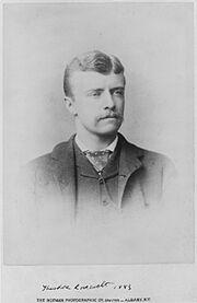 TR NY State Assemblyman 1883