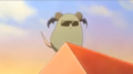 Rat bel
