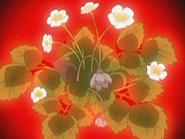 HPC26.Flower