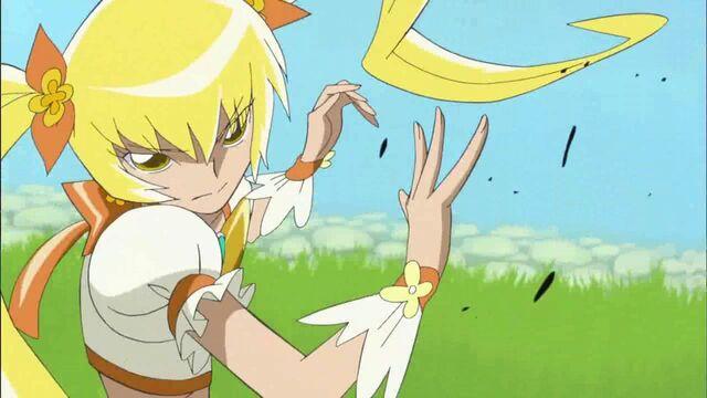 File:HeartCatch Pretty Cure -32.jpg