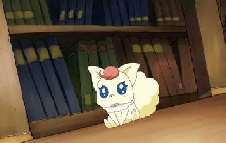 File:Coco as a tanuki.jpg