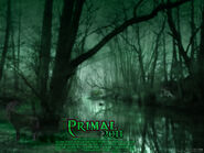 Primal solum movie wallpaper