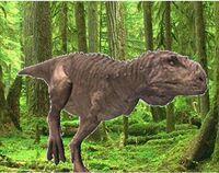 Tarascosaurus again