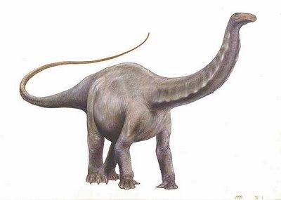 File:Apatosaurus2.jpg