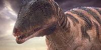 Carcharodontosaurus (PAS)