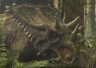Chasmosaurus px