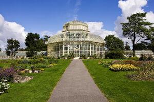 Botanic-gardens-Dublin