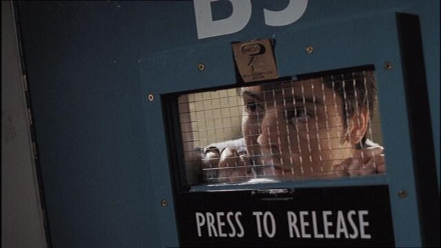 File:3x2connorArrested.jpg