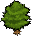 Fichier:Tree.png