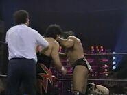 November 13, 1995 Monday Nitro.00013