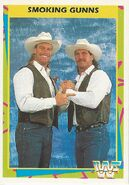 1995 WWF Wrestling Trading Cards (Merlin) Smoking Gunns 12