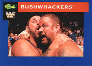 1991 WWF Classic Superstars Cards Bushwhackers 50