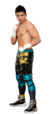 TJ Perkins Stat Photo