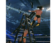WrestleMania 23.15