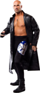 Christopher daniels294