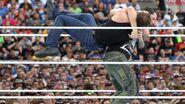 WrestleMania 33.25