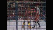 SummerSlam 1990.00056