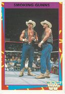 1995 WWF Wrestling Trading Cards (Merlin) Smoking Gunns 100