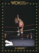 1991 WCW Collectible Trading Cards (Championship Marketing) El Gigante 65