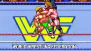 WWF WrestleFest.3