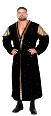 Bobby Roode Stat Photo