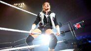 WrestleMania Revenge Tour 2015.8