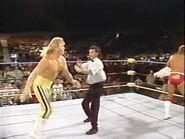 WrestleWar 1991.00009