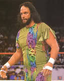 Randy Savage15