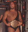 The Giant WCW Championship