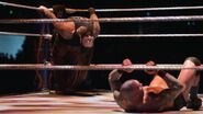 WrestleMania 33.106