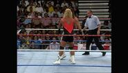 SummerSlam 1993.00017
